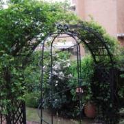 关于铁艺花架的应用